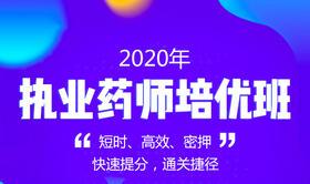 2020执业药师高端培优班(中/西药)