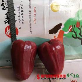 【珠三角包邮】海南黑珍珠莲雾中果 4斤±2两/ 箱 (5月5日到货)