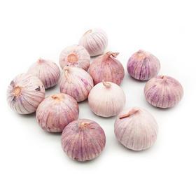 包邮 大理紫皮独头蒜 干蒜  非鲜蒜 大蒜  现挖现发 富含花青素 蒜香浓郁 增强抵抗力