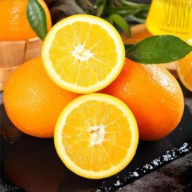 夏橙历经四季营养丰富果肉饱满多汁应季水果整箱10斤装