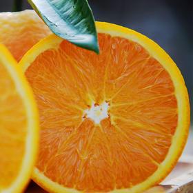 秭归伦晚脐橙 皮薄肉厚 汁多味美 肉质细嫩 现摘现发 新鲜直达