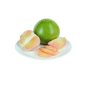 越南金蜜柚 柚子界的法拉利