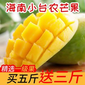 【预售6.3】【战疫助农 买5斤送3斤】 海南小台农芒果 核小甜蜜 多汁嫩滑  现摘现发