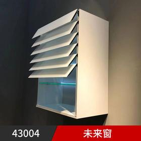 430004未来窗(联系客服享受专属价格)