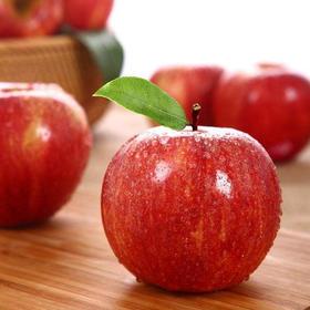 [乐淇火箭小苹果 下单后1-5天内发出]皮薄核小 甜脆无比 2筒(共10颗)顺丰包邮