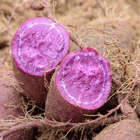 山东紫罗兰富硒紫薯