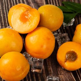 陕西新鲜黄杏 个大饱满 酸爽多汁 当季水果 2斤/4斤现摘现发
