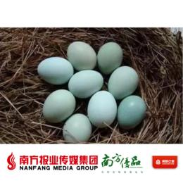 【广东省包邮】五黑鸡蛋  30个/份 (72小时内发货)