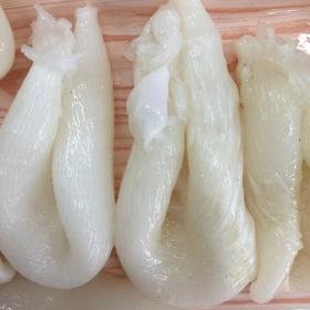 {N4-1c3}水发鱼肚花胶(鸡蛋胶)