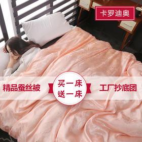 【夏天必备】精品提花蚕丝被  3斤 买一床送一床 附带子母扣