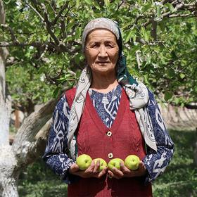 【助力新疆】新疆库尔勒香梨5斤装  新疆直发, 核小肉多 一口咬下去,脆甜多汁!