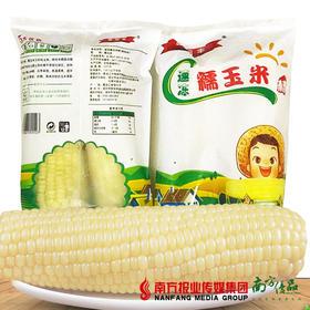 【珠三角包邮】速冻熟糯玉米 480g/包  5包/箱 (7月3日到货)