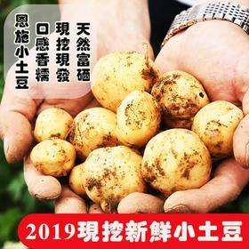 【全国包邮】 恩施富硒小土豆  5斤包邮(48小时之内发货)