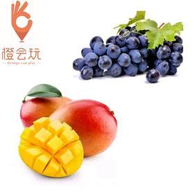【双拼】 芒果+葡萄 250g