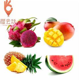 【四拼】火龙果+凤梨+芒果+西瓜  450g