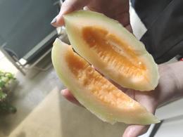 【嘉兴市包邮】19.9元抢东方蜜5斤(带箱重量)!
