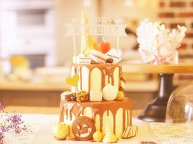 锦瑟年华·精致巧克力淋面生日蛋糕.dg