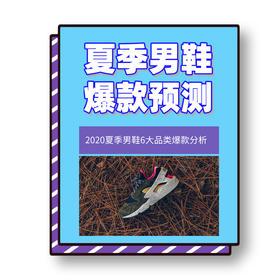 《夏季男鞋爆款预测》电子版/邮箱发送