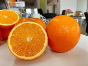 【嘉兴市包邮】24.9元纽荷尔橙6斤装带箱 薄皮甜橙子 生鲜水果