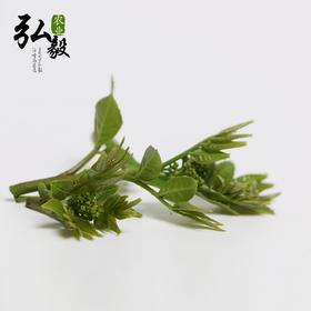 【弘毅六不用生态农场】六不用顺季节露地 花椒芽 煎鸡蛋 半斤/份