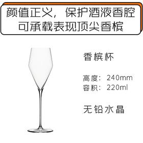 Zalto 香槟酒杯 Zalto Denk Art Champagne