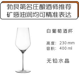 Zalto 白葡萄酒杯 Zalto Denk Art White Wine