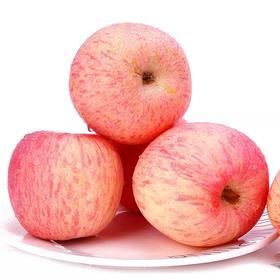 【山东】烟台红富士苹果 个大皮薄 脆甜爽口 果香浓郁