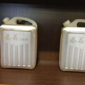 玉山县 茶油10斤装