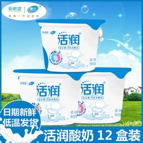 新希望雪兰活润原味12盒装 低温酸奶益生菌风味发酵乳小杯酸牛奶