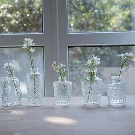 【水晶浮雕花瓶】一套六个,小号水晶花瓶 ins简洁风精致透明创意插花花器摆件