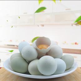 房县绿壳蛋