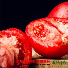 【珠三角包邮】疆来红·沙瓤西红柿 净重5斤 /箱 (5月26日到货)