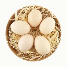 【海南仓内购】谷饲鸡蛋10枚