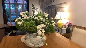 【绿毛球康乃馨组合】绿毛球5枝+白色星太子多头康乃馨20枝
