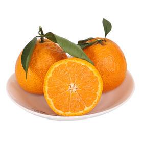 雅安黄果柑大果10斤包邮雅安新鲜水果