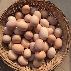 【嘉兴市区三环内配送】40元抢农家特产土鸡蛋30个!散养农家土鸡所产 健康营养!7.3统一配送