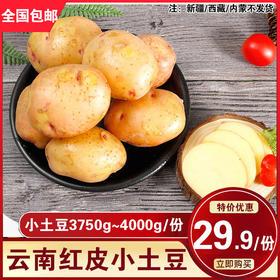 云南红皮小土豆7.5斤~8斤装