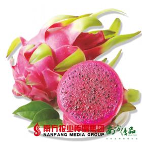 【全国包邮】越南进口红心火龙果5斤装(72小时内发货)