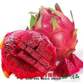 【全国包邮】海南金都一号蜜宝火龙果 单果300-400g (72小时内发货)