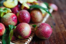 脆甜!攀枝花高山黄油桃4.5斤装!顺丰包邮,新鲜采摘!