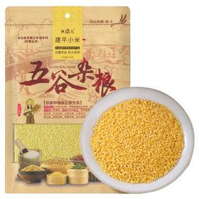 天瑞优品小米500g*2包|原色原香 颗粒饱满 色泽金黄 绵软细腻【粮油特产】