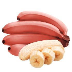 福建土楼红美人香蕉4.5斤|软糯香甜 入口即化 果香浓郁【应季蔬果】