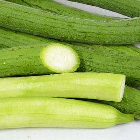 山东新鲜丝瓜5斤|色泽鲜亮 熟果饱满 营养丰富【应季蔬果】