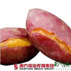 【珠三角包邮】西瓜红迷你番薯 6斤±3两/ 箱 (5月26日到货)
