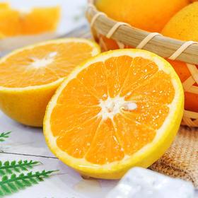 【战役助农 助力湖北】秭归夏橙  夏季酸甜爆汁橙  可榨汁 丰富VC 现摘现发