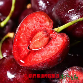 【全国包邮】山东沂蒙山露天大樱桃 3斤±2两/箱(72小时之内发货)