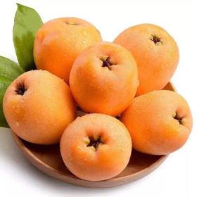 四川高山现摘新鲜枇杷3-5斤|香甜多汁 肉质厚实【应季蔬果】