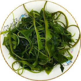 海芽菜心255g/袋