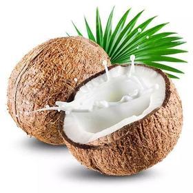 现摘发货海南毛椰子4个|椰汁清甜 椰肉爽滑 肉厚香脆【应季蔬果】