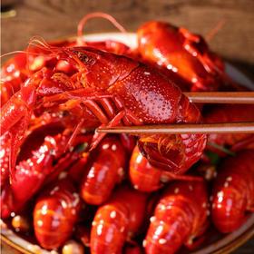 虾之味即食小龙虾即食鲜活烧制1000g/盒*2盒(7-9钱)(滋业铭嘉)